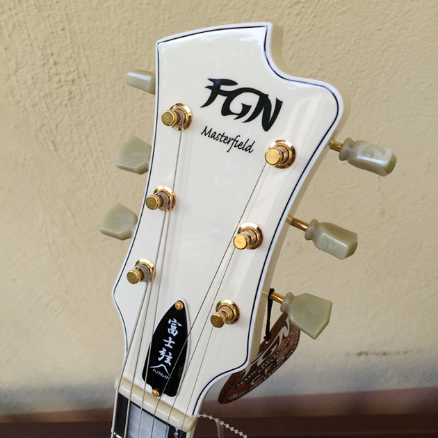 fgn_masterfield_1